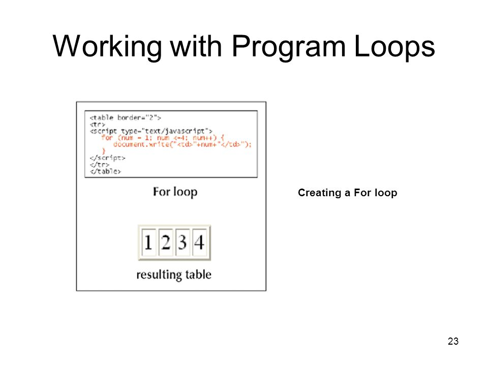23 Working with Program Loops Creating a For loop