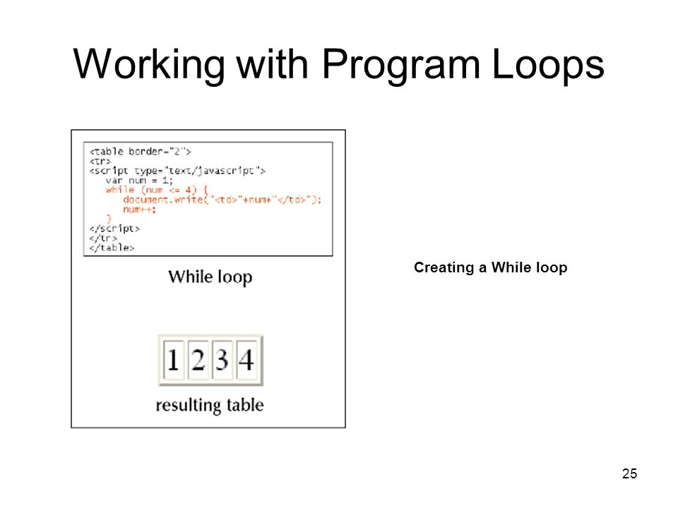 25 Working with Program Loops Creating a While loop