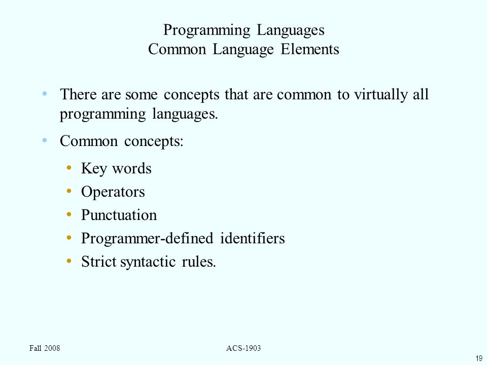 19 Fall 2008ACS-1903 Programming Languages Common Language Elements There are some concepts that are common to virtually all programming languages.
