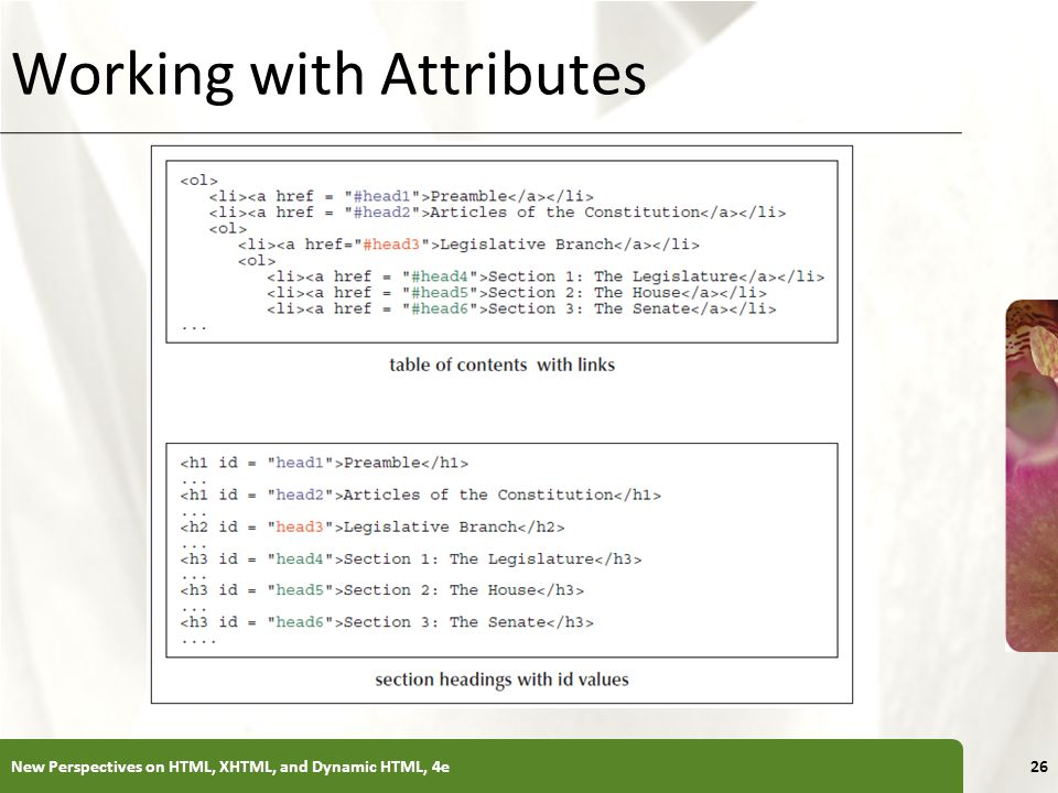 XP Working with Attributes New Perspectives on HTML, XHTML, and Dynamic HTML, 4e26