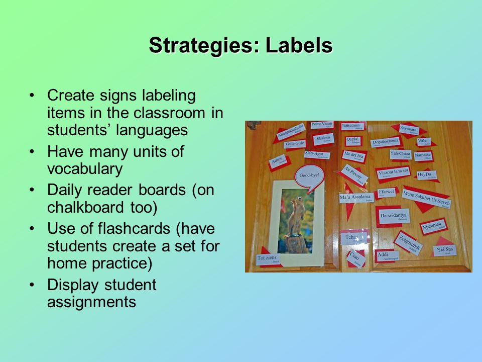 Strategies: Labels Create signs labeling items in the classroom in students' languages Have many units of vocabulary Daily reader boards (on chalkboard too) Use of flashcards (have students create a set for home practice) Display student assignments