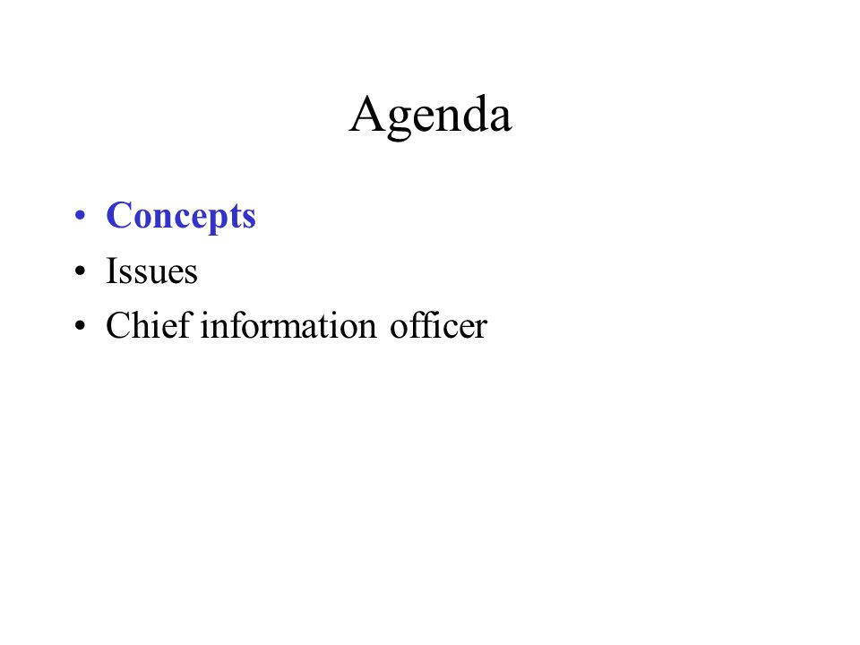 Agenda Concepts Issues Chief information officer