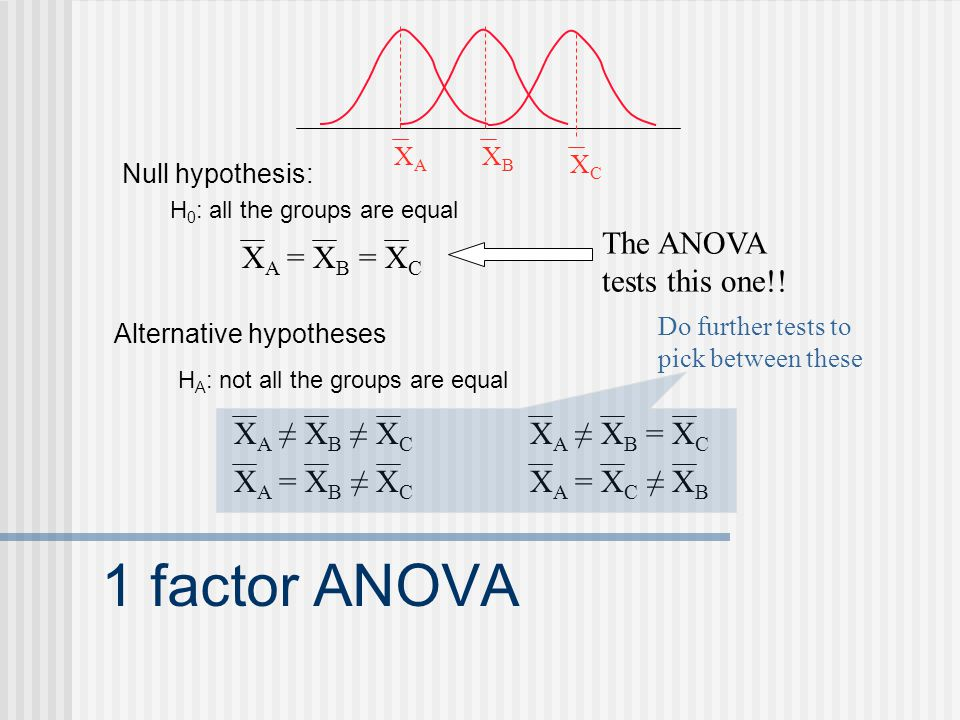 1 factor ANOVA Null hypothesis: H 0 : all the groups are equal X A = X B = X C Alternative hypotheses H A : not all the groups are equal X A ≠ X B ≠ X C X A ≠ X B = X C X A = X B ≠ X C X A = X C ≠ X B The ANOVA tests this one!.