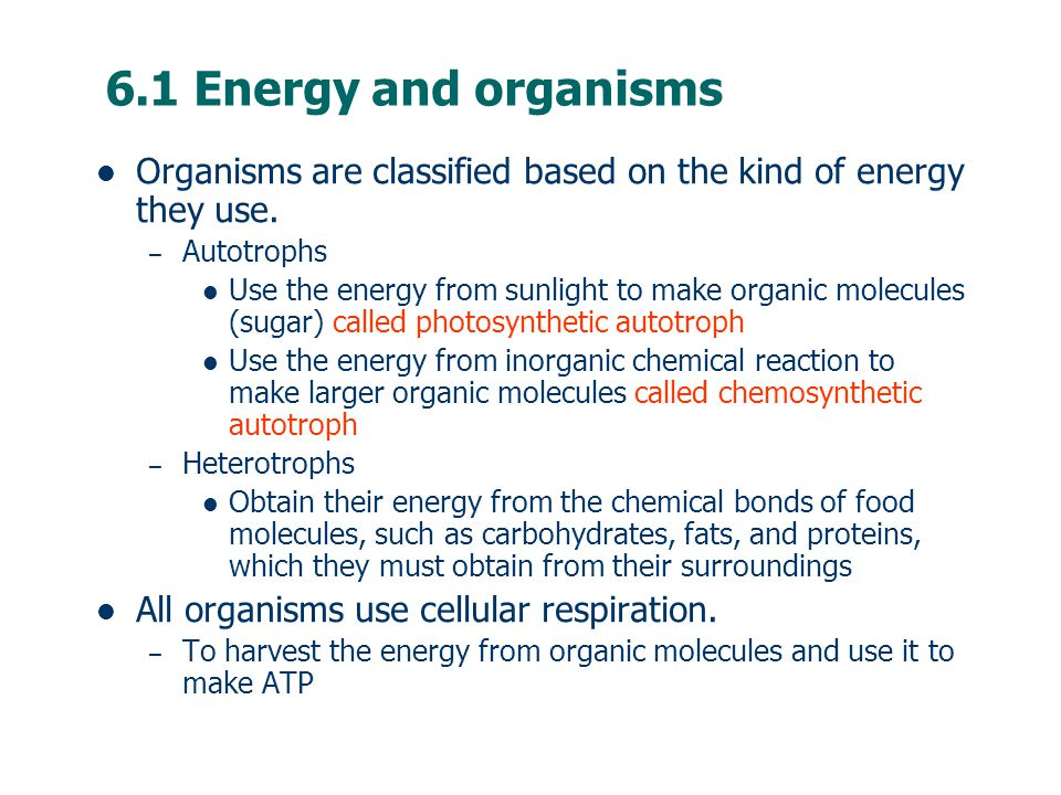 6.1 Energy and organisms Organisms are classified based on the kind of energy they use.