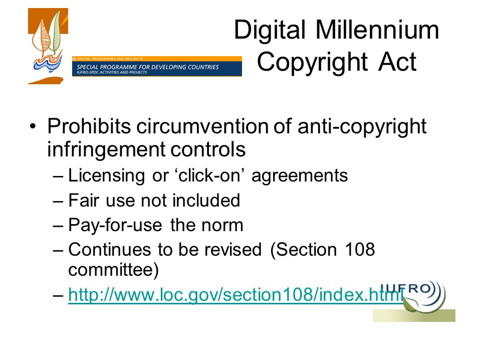 Digital Millennium Copyright Act Prohibits circumvention of anti-copyright infringement controls –Licensing or 'click-on' agreements –Fair use not included –Pay-for-use the norm –Continues to be revised (Section 108 committee) –