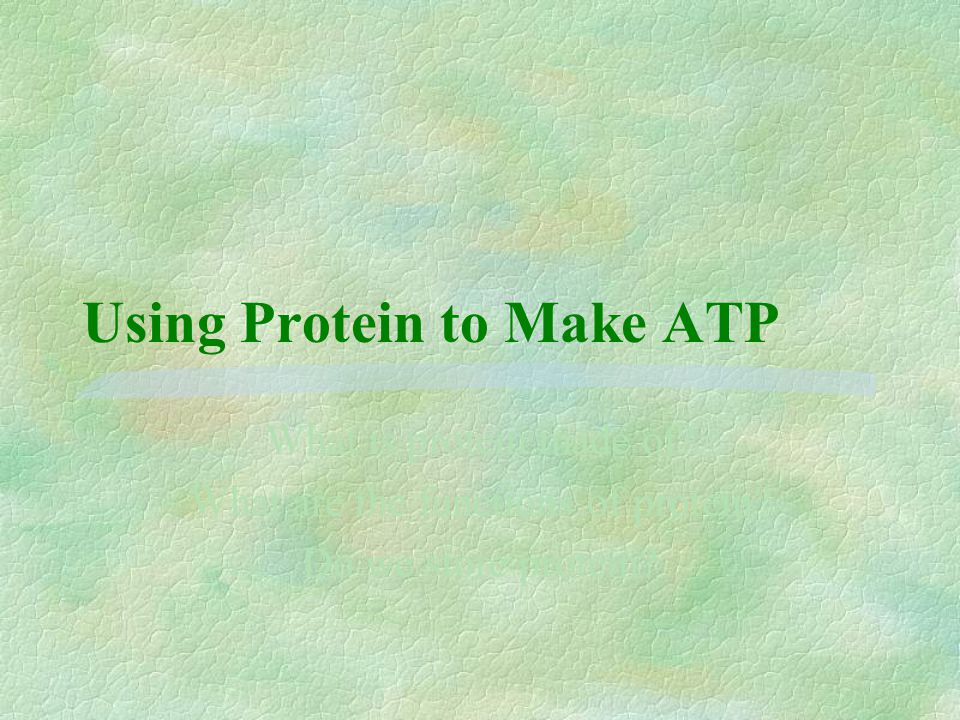 Using Protein to Make ATP What is protein made of.