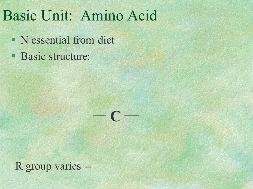 Basic Unit: Amino Acid §N essential from diet §Basic structure: C R group varies --