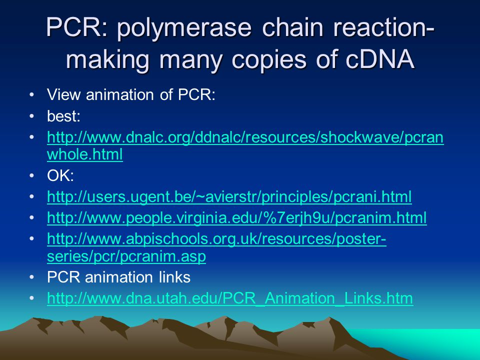 PCR: polymerase chain reaction- making many copies of cDNA View animation of PCR: best:   whole.htmlhttp://  whole.html OK: series/pcr/pcranim.asphttp://  series/pcr/pcranim.asp PCR animation links