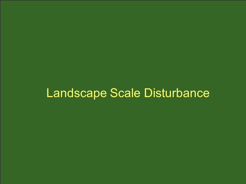 Landscape Scale Disturbance