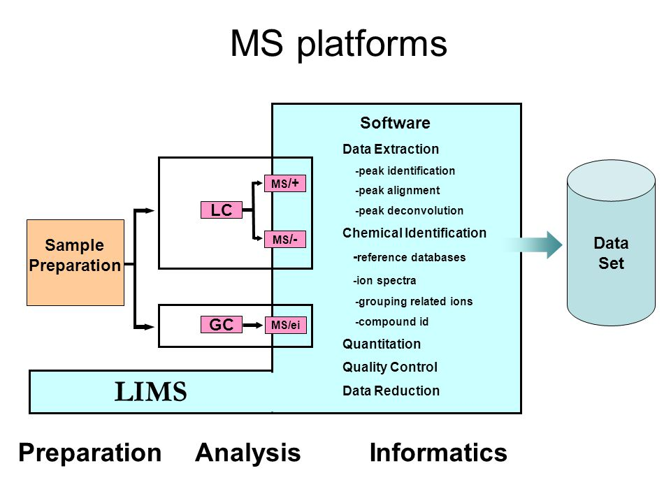 MS platforms Sample Preparation GC MS/ei Data Set Software LC MS /+ MS /- Data Extraction -peak identification -peak alignment -peak deconvolution Chemical Identification - reference databases -ion spectra -grouping related ions -compound id Quantitation Quality Control Data Reduction PreparationAnalysisInformatics LIMS