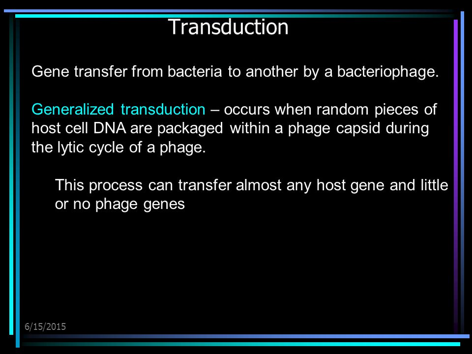 6/15/2015 Transduction Gene transfer from bacteria to another by a bacteriophage.