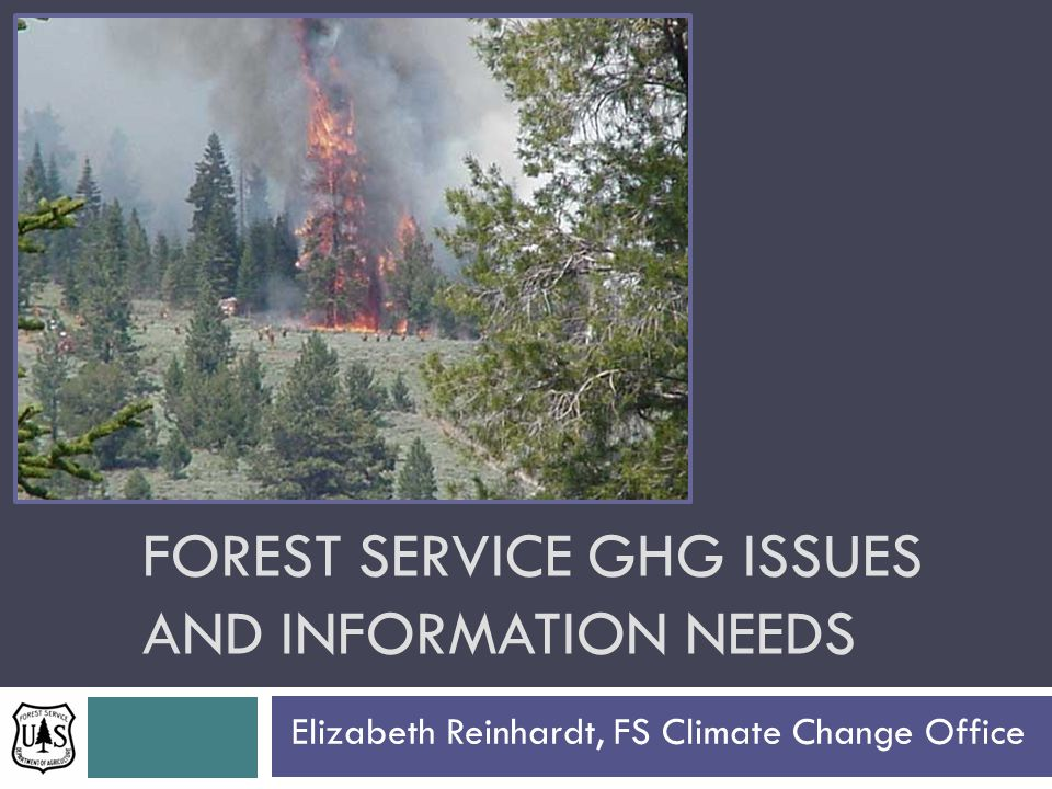 FOREST SERVICE GHG ISSUES AND INFORMATION NEEDS Elizabeth Reinhardt, FS Climate Change Office