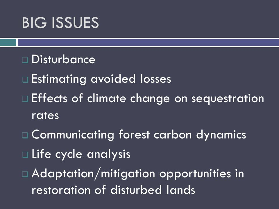 BIG ISSUES  Disturbance  Estimating avoided losses  Effects of climate change on sequestration rates  Communicating forest carbon dynamics  Life cycle analysis  Adaptation/mitigation opportunities in restoration of disturbed lands