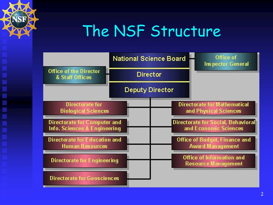 2 The NSF Structure