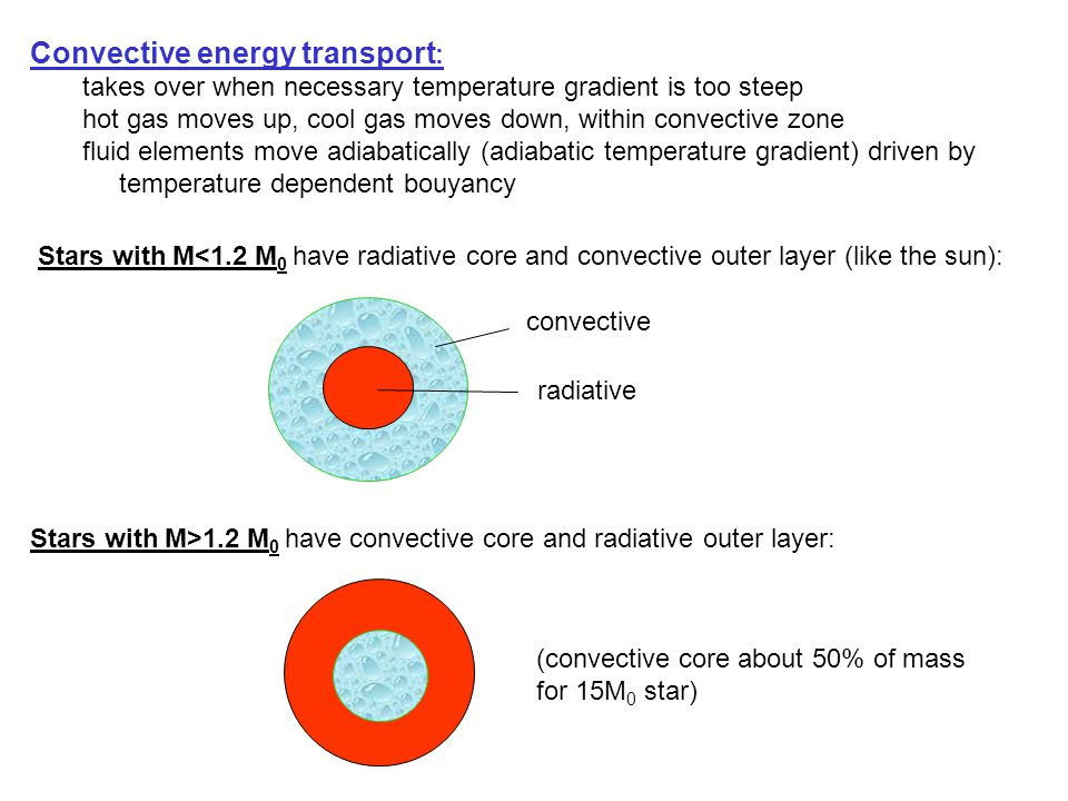 Convective energy transport : takes over when necessary temperature gradient is too steep hot gas moves up, cool gas moves down, within convective zone fluid elements move adiabatically (adiabatic temperature gradient) driven by temperature dependent bouyancy Stars with M<1.2 M 0 have radiative core and convective outer layer (like the sun): Stars with M>1.2 M 0 have convective core and radiative outer layer: convective radiative (convective core about 50% of mass for 15M 0 star)