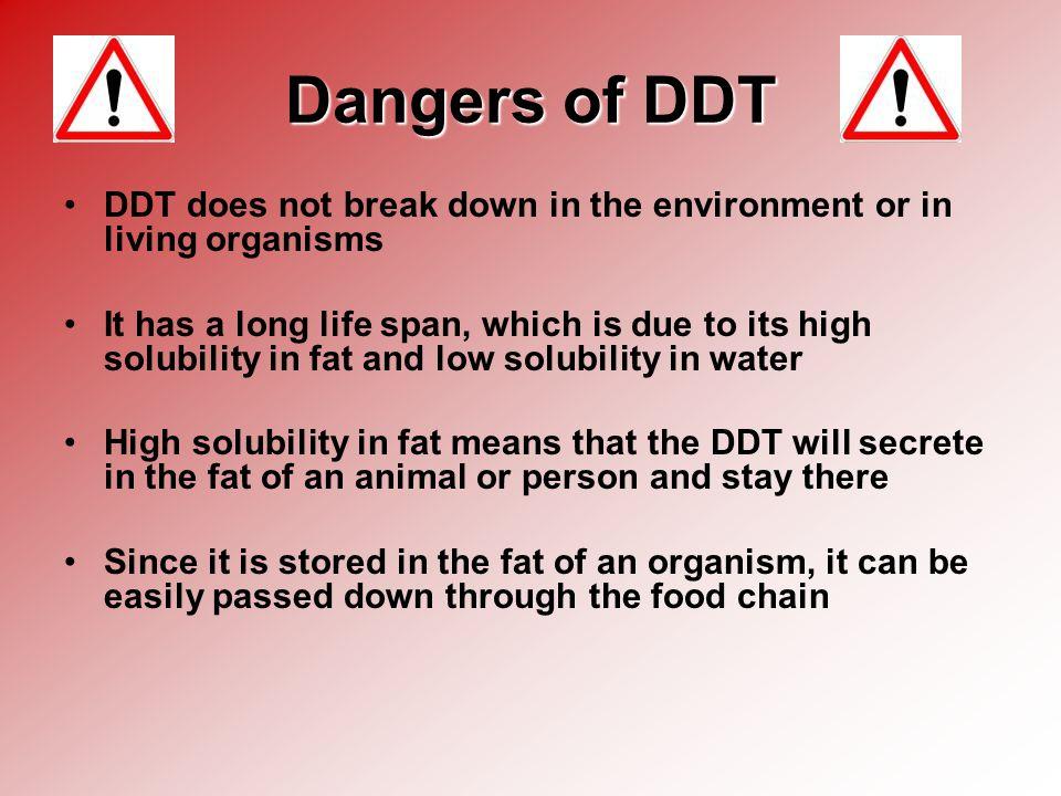 Image result for ddt danger
