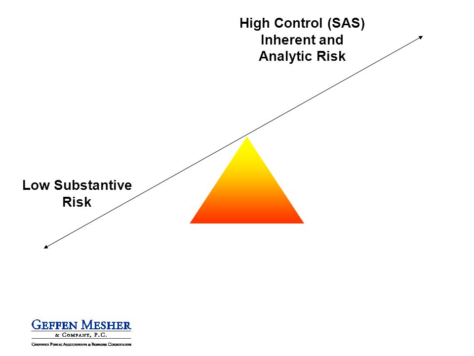 High Control (SAS) Inherent and Analytic Risk Low Substantive Risk