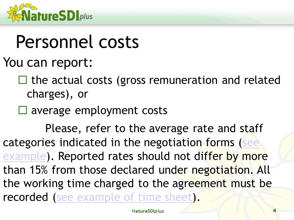 Personnel costs You can report:  the actual costs (gross remuneration and related charges), or  average employment costs Please, refer to the average rate and staff categories indicated in the negotiation forms (see example).