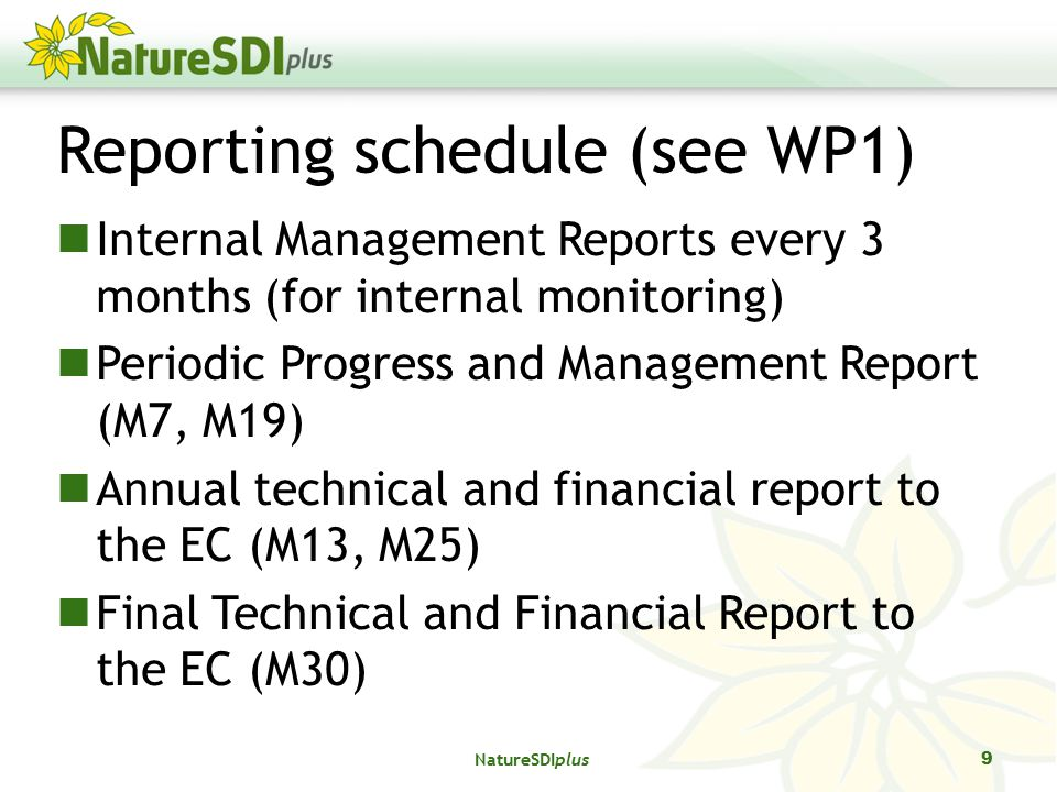 Reporting schedule (see WP1) Internal Management Reports every 3 months (for internal monitoring) Periodic Progress and Management Report (M7, M19) Annual technical and financial report to the EC (M13, M25) Final Technical and Financial Report to the EC (M30) 9 NatureSDIplus