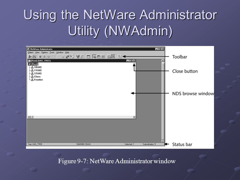 Using the NetWare Administrator Utility (NWAdmin) Figure 9-7: NetWare Administrator window