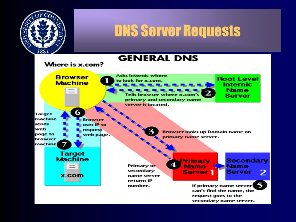 DNS Server Requests