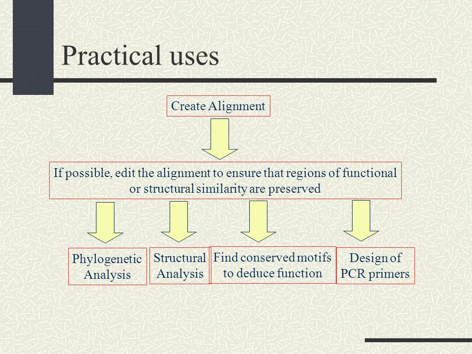 Practical uses Create Alignment If possible, edit the alignment to ensure that regions of functional or structural similarity are preserved Phylogenetic Analysis Structural Analysis Find conserved motifs to deduce function Design of PCR primers