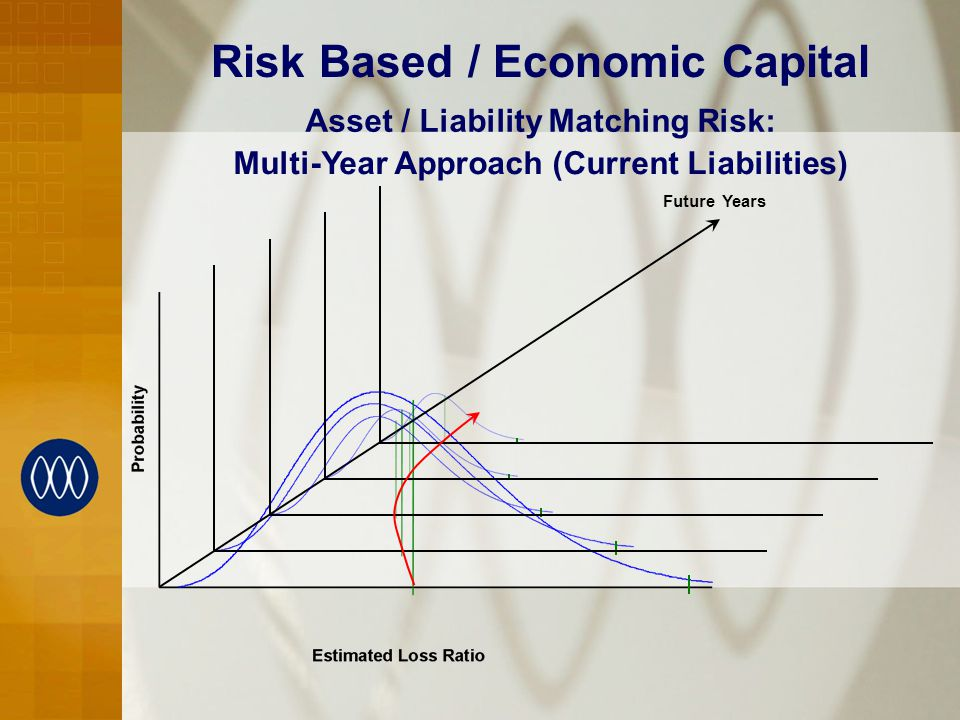 Risk Based / Economic Capital Multi-Year Approach (Current Liabilities) Asset / Liability Matching Risk: Future Years