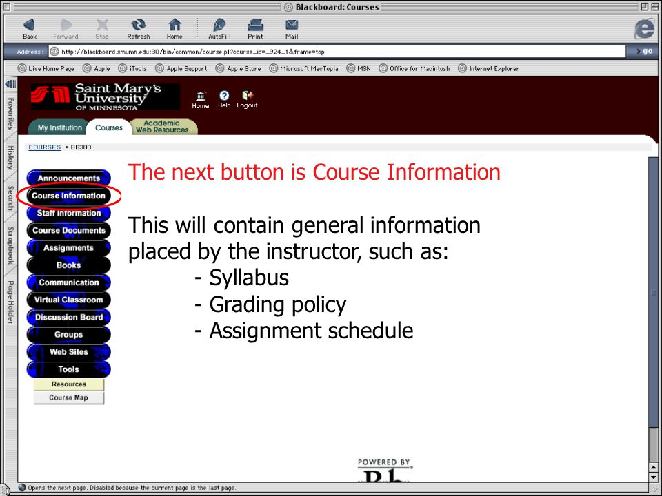 Course Information The next button is Course Information This will contain general information placed by the instructor, such as: - Syllabus - Grading policy - Assignment schedule