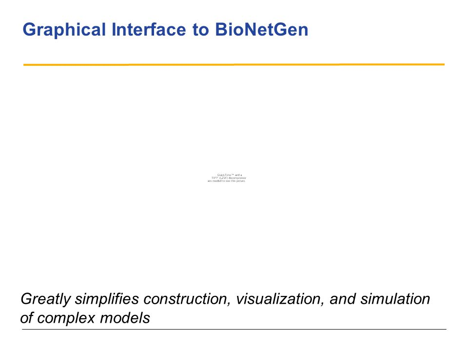 Graphical Interface to BioNetGen Greatly simplifies construction, visualization, and simulation of complex models