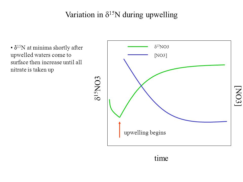 Variation in  15 N during upwelling  15 N at minima shortly after upwelled waters come to surface then increase until all nitrate is taken up time  15 NO3 upwelling begins [NO3]  15 NO3 [NO3]