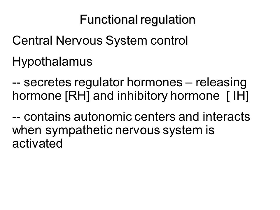 Functional regulation Central Nervous System control Hypothalamus -- secretes regulator hormones – releasing hormone [RH] and inhibitory hormone [ IH] -- contains autonomic centers and interacts when sympathetic nervous system is activated