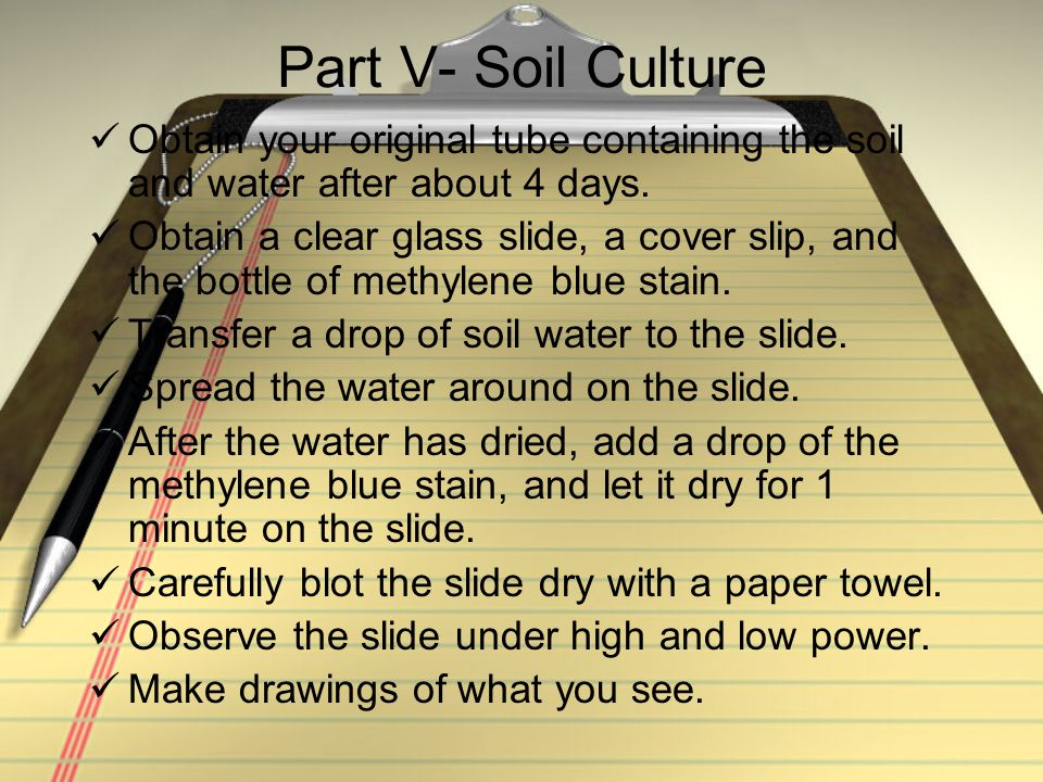 Part V- Soil Culture Obtain your original tube containing the soil and water after about 4 days.