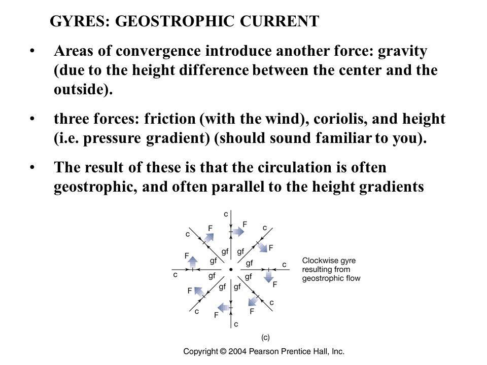 GYRES: GEOSTROPHIC CURRENT Areas of convergence introduce another force: gravity (due to the height difference between the center and the outside).