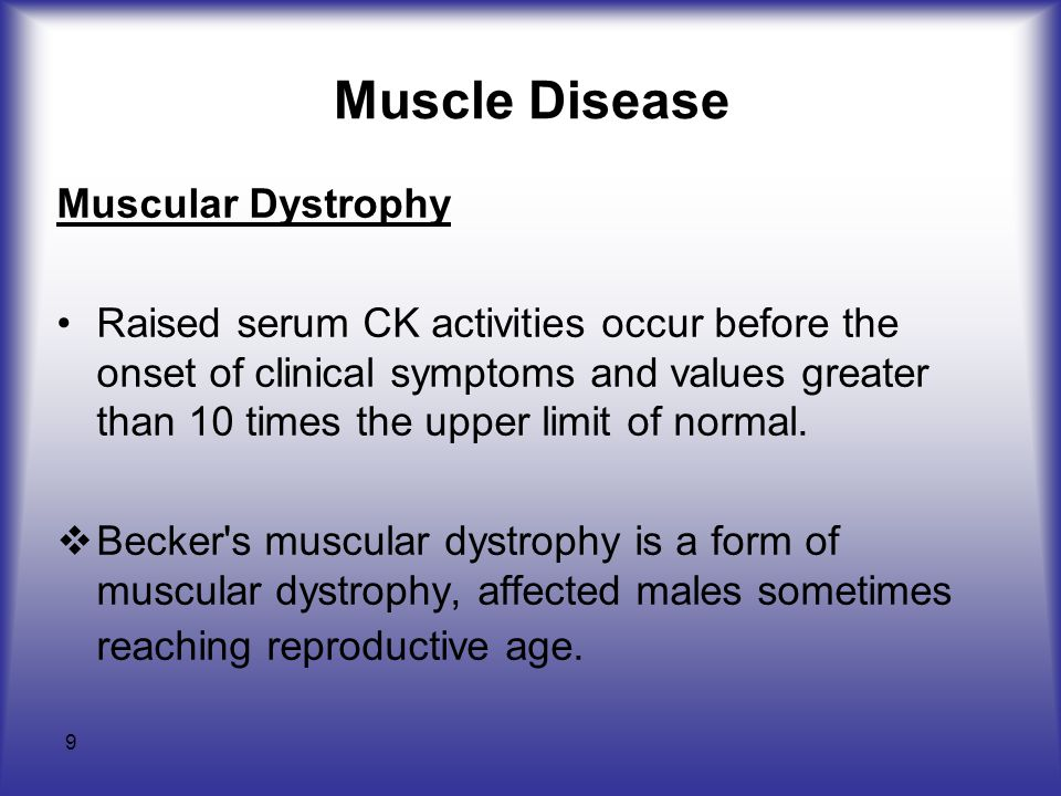 9 Muscle Disease Muscular Dystrophy Raised serum CK activities occur before the onset of clinical symptoms and values greater than 10 times the upper limit of normal.