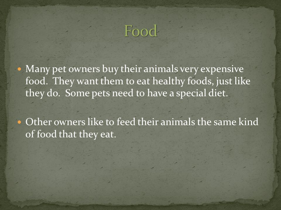 Many pet owners buy their animals very expensive food.