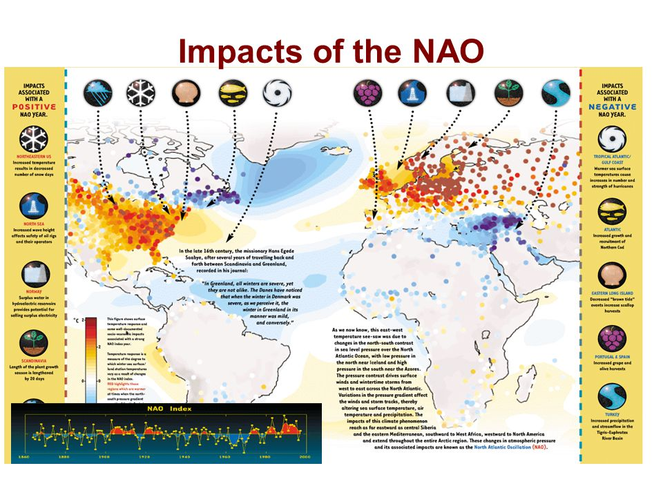 Impacts of the NAO.