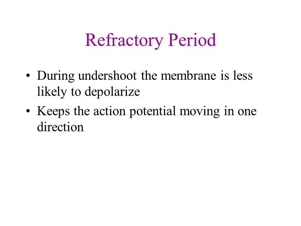 Refractory Period During undershoot the membrane is less likely to depolarize Keeps the action potential moving in one direction