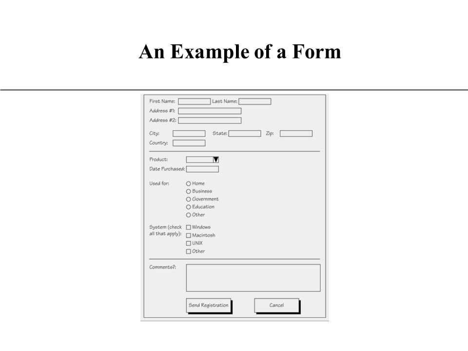XP An Example of a Form