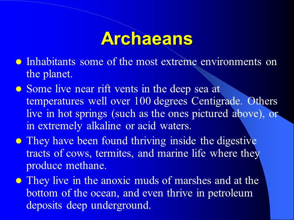 Archaeans Inhabitants some of the most extreme environments on the planet.
