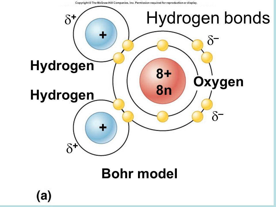 –– ++ Oxygen Hydrogen Bohr model 8+ 8n + + –– ++ Copyright © The McGraw-Hill Companies, Inc.