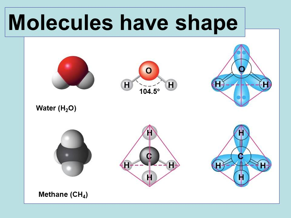Water (H 2 O) Methane (CH 4 ) 104.5° Molecules have shape