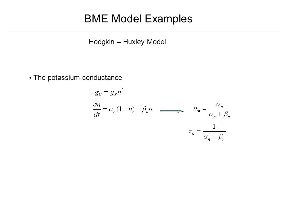 BME Model Examples Hodgkin – Huxley Model The potassium conductance