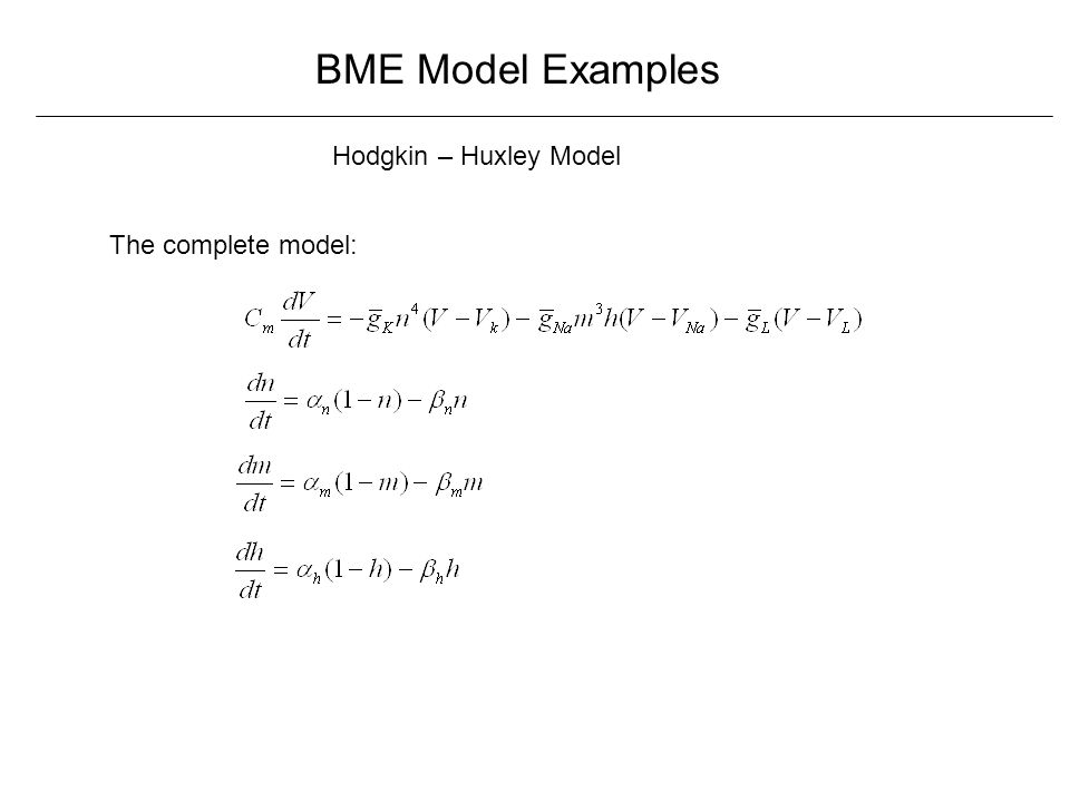 BME Model Examples Hodgkin – Huxley Model The complete model: