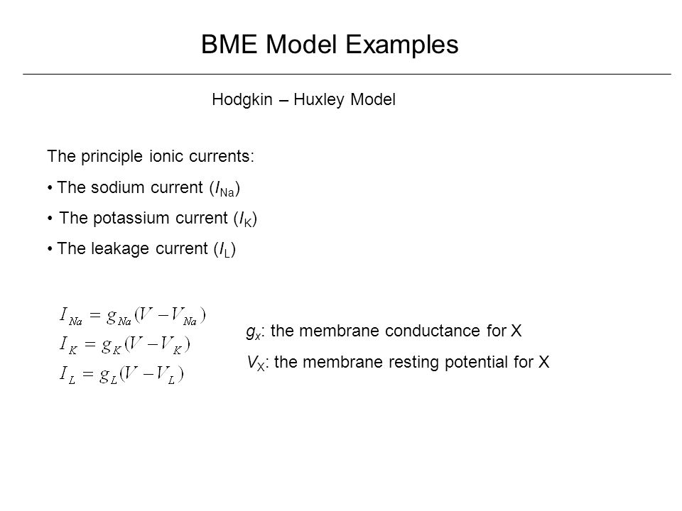 BME Model Examples Hodgkin – Huxley Model The principle ionic currents: The sodium current (I Na ) The potassium current (I K ) The leakage current (I L ) g x : the membrane conductance for X V X : the membrane resting potential for X