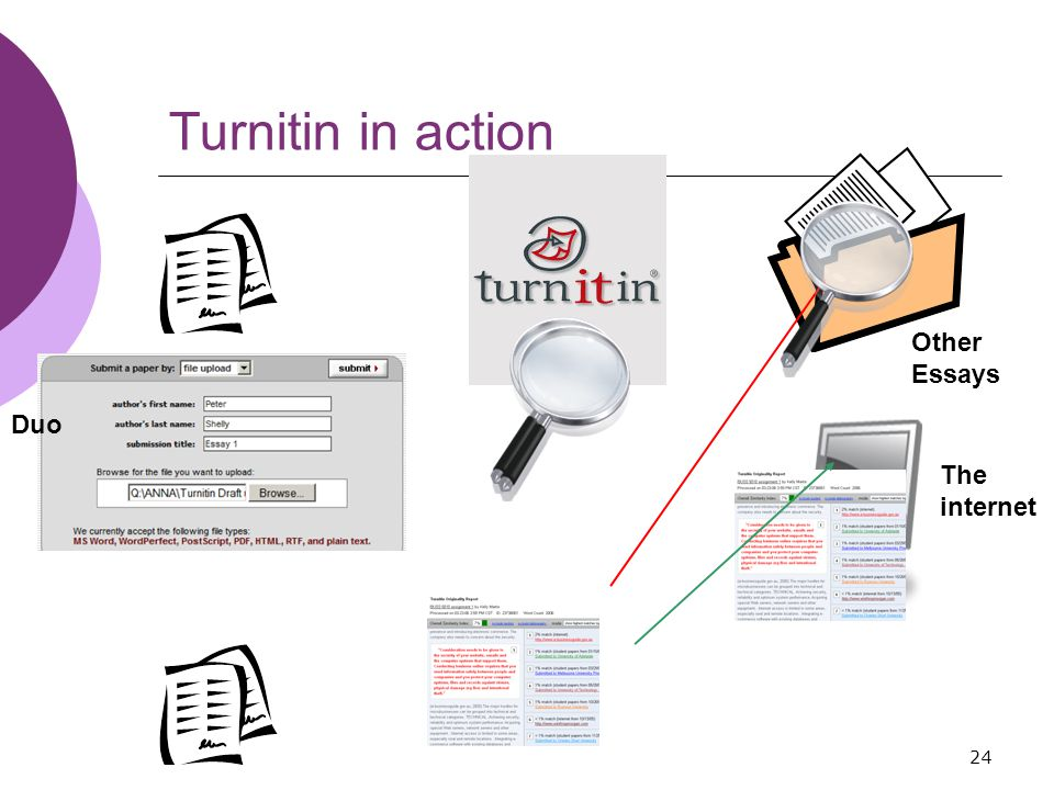 24 Other Essays Turnitin in action Duo The internet