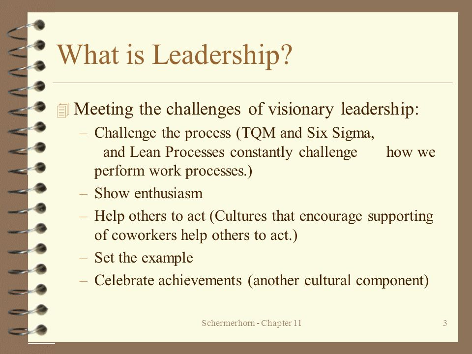 Schermerhorn - Chapter 113 What is Leadership? 4 Meeting the challenges of visionary leadership: –Challenge the process (TQM and Six Sigma, and Lean P