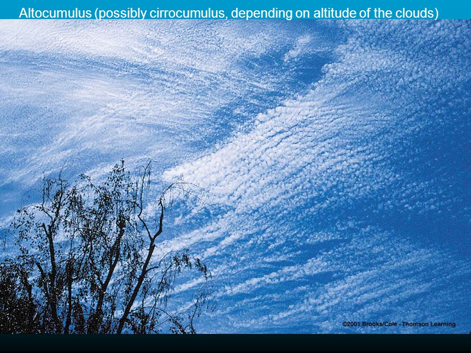 Altocumulus (possibly cirrocumulus, depending on altitude of the clouds)