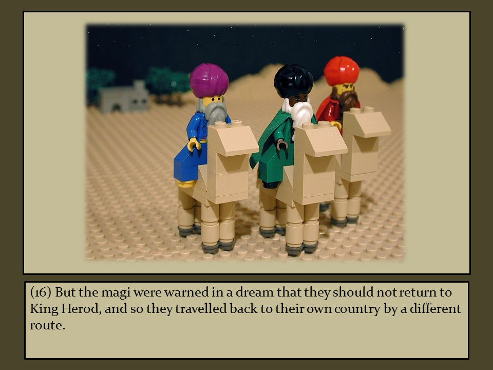 (16) But the magi were warned in a dream that they should not return to King Herod, and so they travelled back to their own country by a different route.