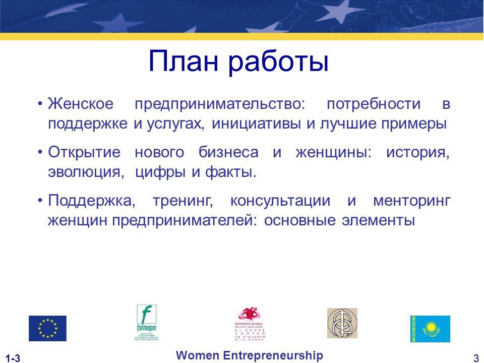 1-33 Women Entrepreneurship План работы Женское предпринимательство: потребности в поддержке и услугах, инициативы и лучшие примеры Открытие нового бизнеса и женщины: история, эволюция, цифры и факты.