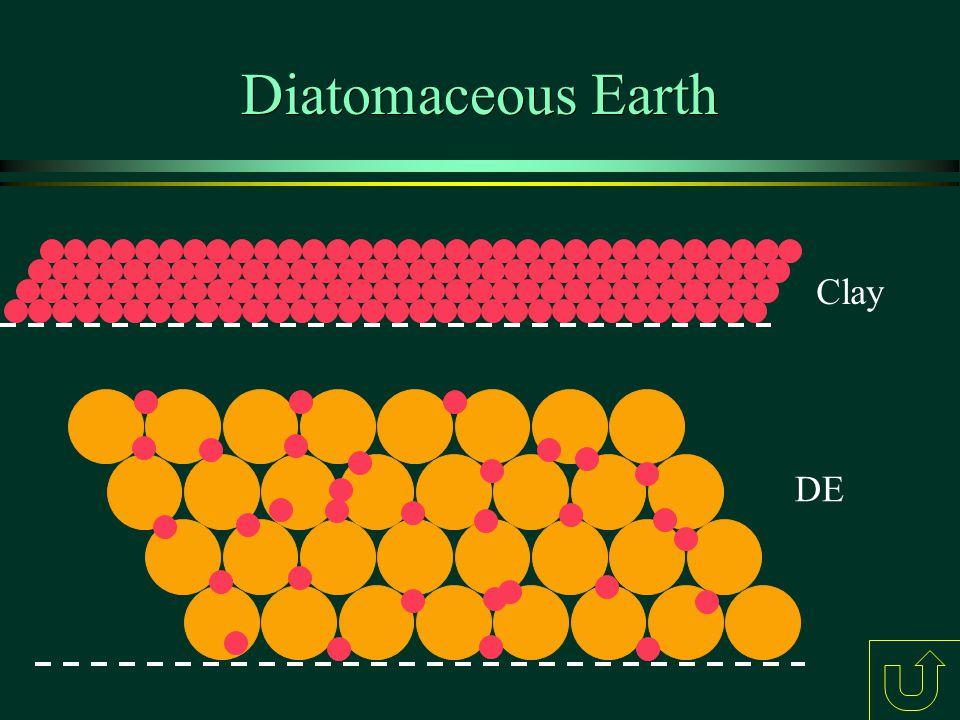 Diatomaceous Earth Slide